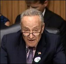 Senator Chuck Schumer at a Senate Hearing Last Month