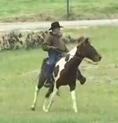 Republican Candidate, Roy Moore, Accused of Child Molestation, Rides His Horse to Vote in the Special Election for U.S. Senate on December 12, 2017